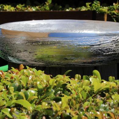 Salad Bowl Don Sheil